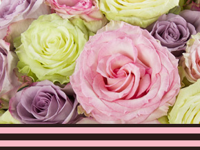 10 rozenweetjes