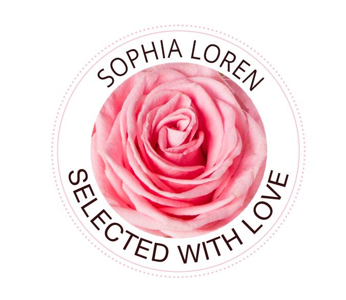 Sophia Loren rozen