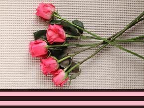 Hard roze rozen