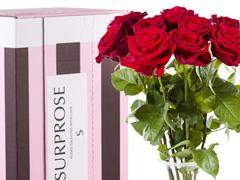 10 rode rozen bestellen