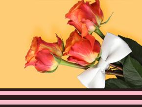 Gelegenheden zakelijk rozen bestellen