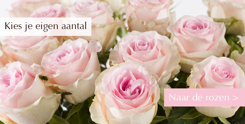 Kies je aantal rozen