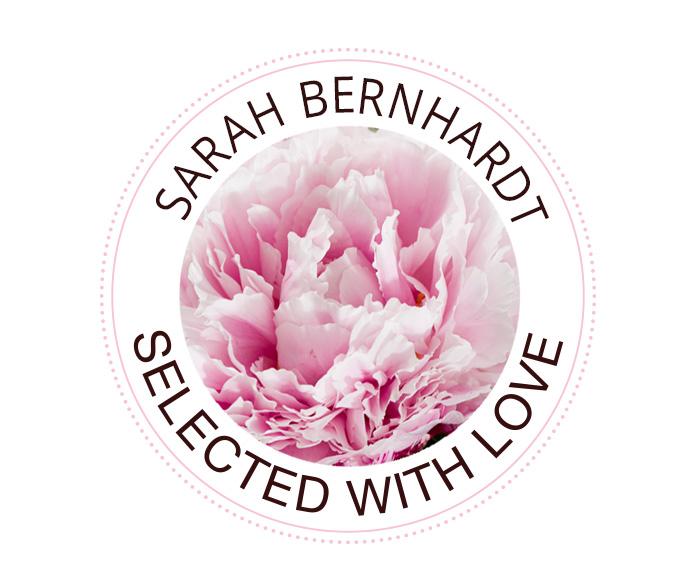 Sarah Bernhardt pioenrozen