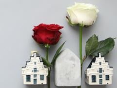 Nederlandse rozen