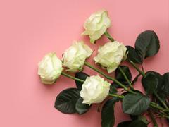 Grote rozen online bestellen