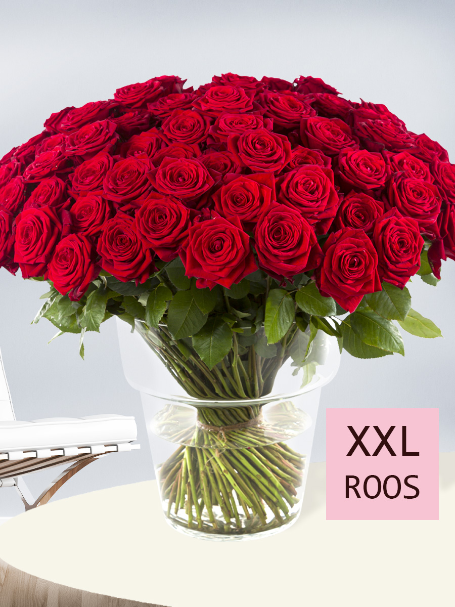 100 rozenboeket: hier bestellen