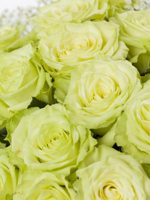Groene rozen laten bezorgen