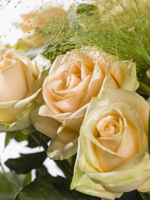 Zalmkleurige rozen bestellen en versturen
