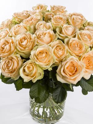 Zalmkleurige rozen laten bezorgen
