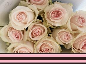Zakelijk rozen voor evenementen bestellen