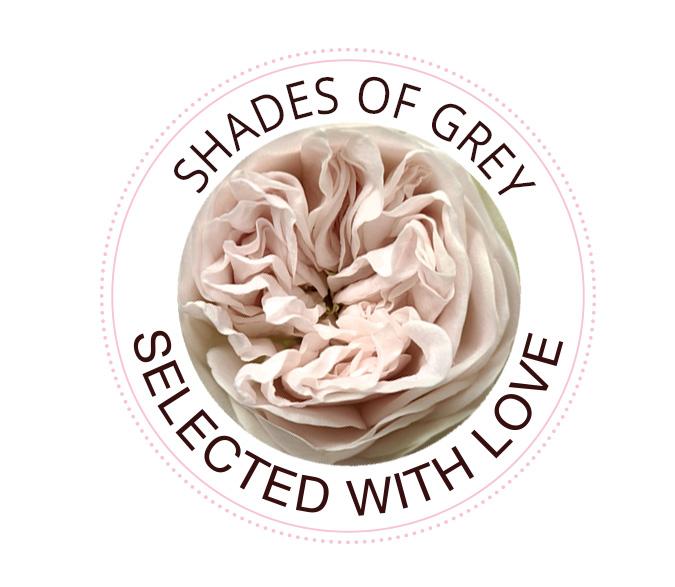 Shades of Grey rozen