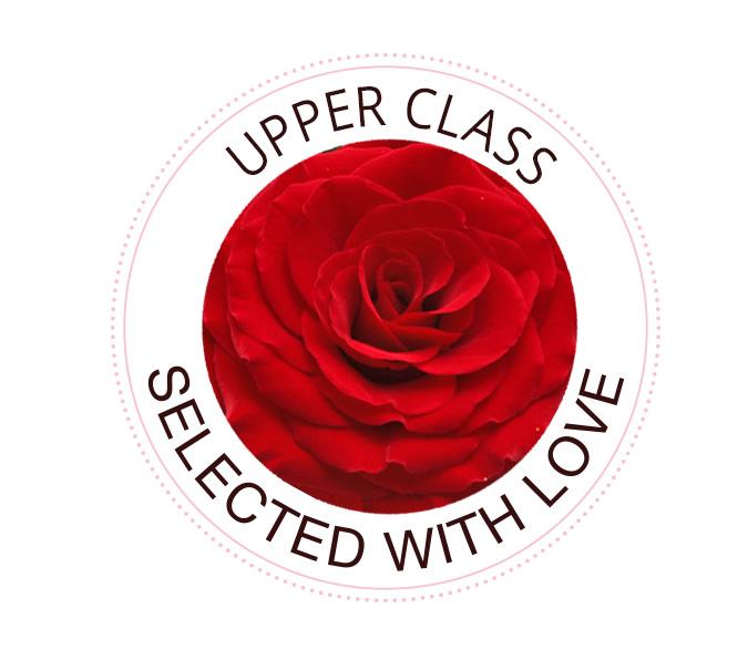 Upper Class rozen