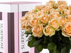 Zalmkleurige rozen bezorgen